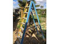 Step ladder 9 tread