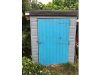 6x5 painted shed