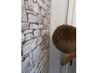 Painting, Wall paper, plastering, sash windows repairs for domestic and commercial
