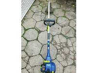 Extreme petrol engine strimmer