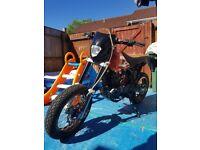 Project bike (pulse adrenaline 125cc)