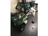G3 Rider Golf Buggy