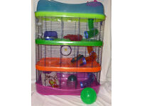 Bargain Deluxe Hamster Cages - Imac Fantasy and free cage accessories! £30 for one or £50 for two!