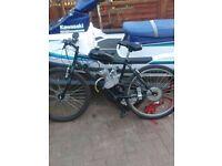 80cc 2stroke Mountain bike motorbike not pit bike
