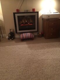 Very attractive almost new electric log/flame wall mounted fire.