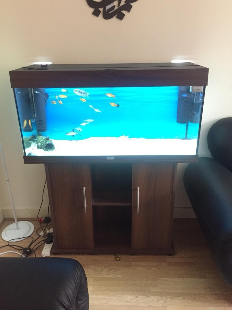 Juwel Rio 180L Fish Tank