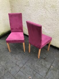 Two Dusty Pink Suede Chairs