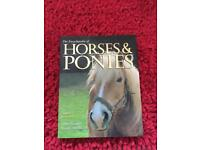 Various Horse books on health, training and exercise.