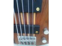 Peavey C5 Thru Neck Bass Guitar With Lane Poor Pickups