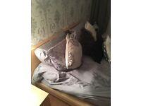 Ikea Kingsize Malm Bed Frame