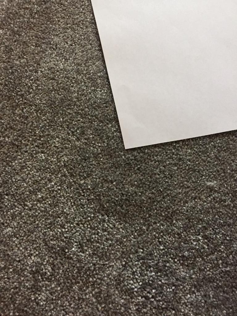 **FREE** Roll of Carpet 1.5m X 6.3m approx