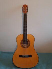 Herald Guitar 3/4 sized Model HL34