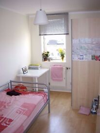 Single room for student/professional in Manor House N15
