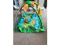 Fisher price jungle playmat