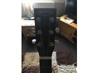Martin and co DX1RAE guitar and case
