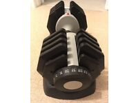 New Bodymax Adjustable 25kg Dumbbell (gifted from Xmas)
