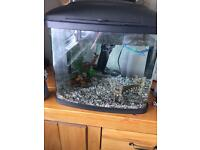 45ltr fish tank for sale with all accessories