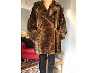 Ladies Beautiful Fur Coat. Wallis Exclusive One Size