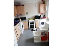 council /housing want to swap for Large 2bed end of terrace house in bh6 area