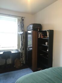 Bright room to rent in the West-End, 5 minutes to the University and 15 minutes to the City Center