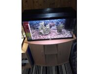 """JUWEL"" 100 LITER ON CABINET/AQUARIUM/FISH TANK/HOBBIES/PETS"