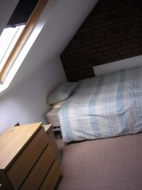 Room in Friendly Shared House. Would suite young professional or student.