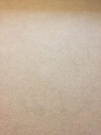 Cream Carpet (Linen) brand new high quality 80wool/20.