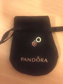 Pandora charms ONLY £20