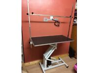 Professional Hydraulic Dog Grooming Table