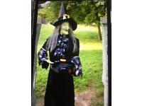 Wendy Halloween witch