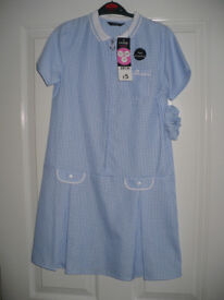 Bundle of 4 brand new Light Blue Gingham School Uniform Summer Dresses with zip for 10-11 years.