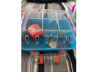 Imaculate Dwarf Hamster Cage and Accessories