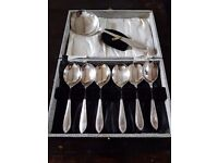A set of six spoons plus a serving spoon.