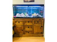 TropiAquarium 4ft used in very good condition with fishs and solid oak furniture