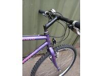 Specialized Rockhopper Mountain Bike 1980s Vintage