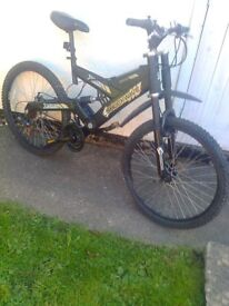 A CRAZY LOOKING BIKE - FOR SALE - DISC BRAKES ETC- CHEAP PRICE !!