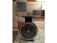 Salter kitchen scales