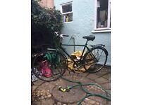 Vintage green Raleigh unisex bike