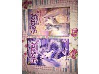 Two my secret unicorn books: A Winter Wish and Dreams Come True