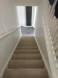 Champagne Axminster stair & landing carpet