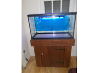 Fish Tank complete +stand