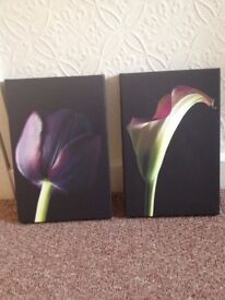 Small flower canvases x2