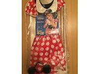 Adult size Minnie Mouse Dress