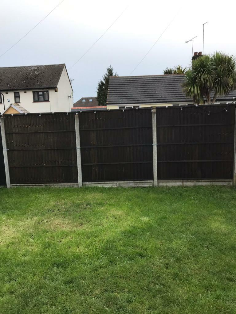 Fence Panels In Pilgrims Hatch Essex Gumtree