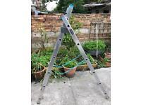 Macalister Ladder