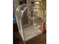 Large parrot cage for sal