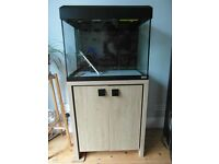 Fluval Roma 90 tank and stand etc in excellent condition