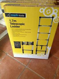 1.7 m extendable ladder
