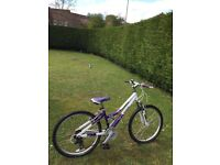 Girls Reebok 24 inch mountain bike (would suit age 10 -14 year old girl)