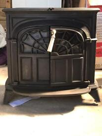 Multi fuel wood burner